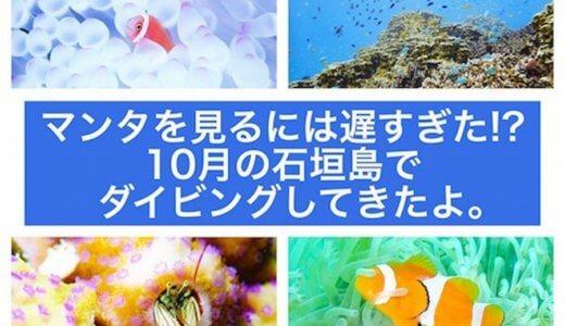 マンタを見るには遅すぎた!?10月の石垣島でダイビングしてきたよ。