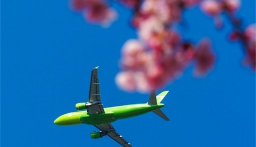 飛行機と桜が同時に見れる!成田・さくらの山公園でお花見してきたよ。